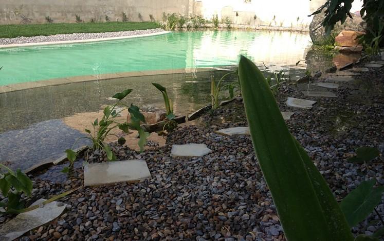 Piscina natural y ecológica